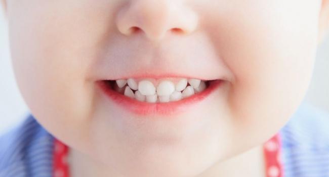 Почему первые зубы называют молочными?